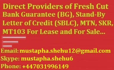 Providers of Fresh Cut BG, SBLC and MTN | Bin Qasim Town